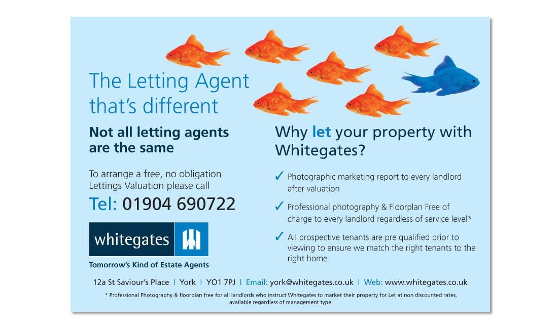Whitegates Estate Agents Flyer